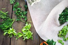 Fresh green parsley leaves in a small basket on a sacking background. Fresh green parsley leaves in a small basket on a sacking background Stock Images