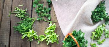 Fresh green parsley leaves in a small basket on a sacking background. Fresh green parsley leaves in a small basket on a sacking background Stock Image