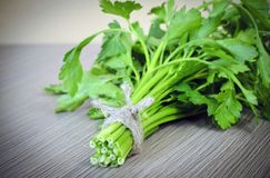 Fresh Green Parsley over Woody Old Background Royalty Free Stock Image