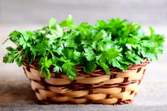 Fresh green parsley sprigs in a wicker basket. Garden parsley photo. Source of flavonoid and antioxidants, folic acid, vitamin K Stock Photo