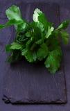 The Fresh Green parsley. The Fresh Green parsley on wet dark stone background Stock Images