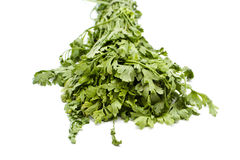 Fresh Green Parsley Royalty Free Stock Photos