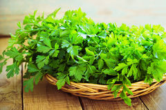 Fresh green parsley on wooden background Royalty Free Stock Photo