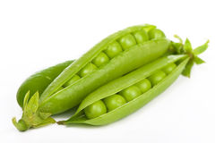 Fresh green pea Stock Images