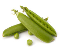 Fresh green pea pod Royalty Free Stock Photos