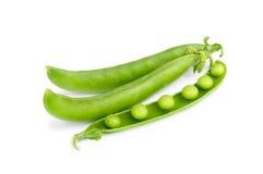 Fresh green pea pod Stock Photos