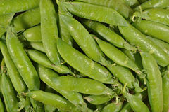 Fresh green pea pods background Stock Photos
