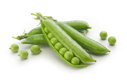 Fresh green pea pods and peas Stock Images