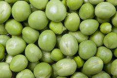 Fresh green peas. Stock Photography