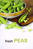 Fresh green peas Royalty Free Stock Photo