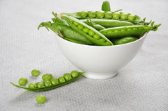 Fresh green peas. On a white bowl Royalty Free Stock Image