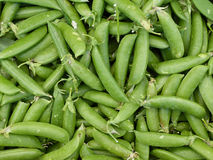 Fresh green peas. Fresh peas at the farmers market Royalty Free Stock Images