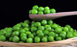 Fresh green peas. Fresh wet green peas on the wooden spoon Royalty Free Stock Photo