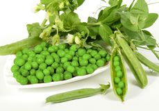 Fresh green peas Stock Photo