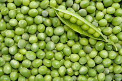 Fresh green peas background. With green pea pod Stock Image