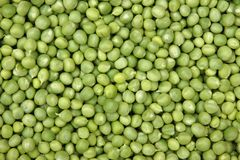 Fresh green peas Stock Images