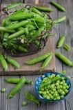 Fresh green peas Stock Photos