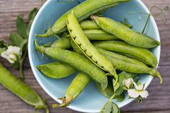 Fresh green peas in a bowl Stock Images