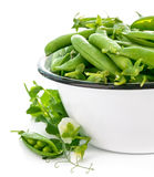 Fresh green peas with leaf and flower Stock Photography