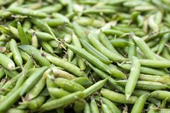 Fresh green peas on the market Royalty Free Stock Photography