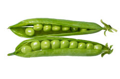 Fresh green peas in the pod Stock Image