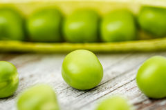 Fresh Green Peas and Pods. Fresh raw green peas and pods on white wooden background Stock Photography