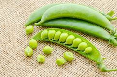 Fresh green peas pods. Fresh green peas pods on sack background Royalty Free Stock Photography