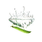 Fresh green peas splash on water, isolated Stock Image