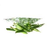 Fresh green peas splash on water, isolated Royalty Free Stock Image