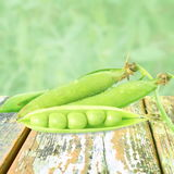 Fresh green peas vegetable in blurs plant  background Royalty Free Stock Photos
