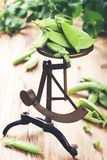 Fresh green peas on vintage scales Stock Photography