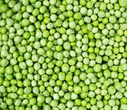 Fresh green peas. Royalty Free Stock Image