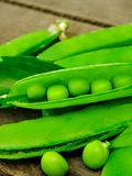 Fresh green peas on wood background.  peas, pods and leaves set. Healthy food. Macro shooting. Flower, green leaves,top view, flat lay.Branches of ripe, green stock illustration