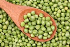 Fresh green peas in a wooden spoon Stock Photos