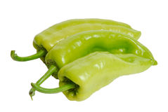 Fresh green pepper Stock Photography