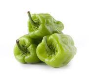 Fresh Green Pepper royalty free stock images