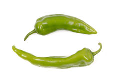 Fresh green pepper Stock Image