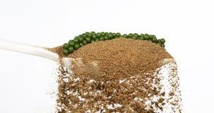 Fresh green pepper, piper nigrum, spice falling in pepper ground on white background, slow motion. 4K stock video