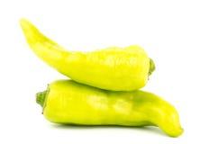Fresh green pepper Royalty Free Stock Photos