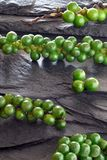 Fresh green peppercorns on gray slate stone Royalty Free Stock Images