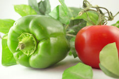 Fresh Green Peppers and Tomato stock images