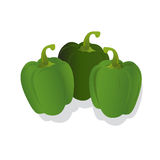 Fresh green peppers, vector illustration, isolated on white background. Fresh green peppers isolated on white background Stock Photography