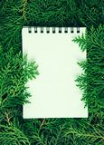 The fresh green pine leaves with empty paper note pad  , Orienta. Fresh green pine leaves with empty paper note pad  , Oriental Arborvitae, Thuja orientalis also Stock Photography