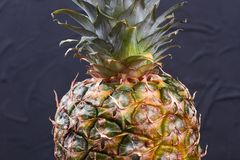 Fresh green pineapple close up. Hawaiian ananas on black background. Tasty tropical fruit Stock Images
