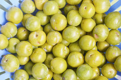 Fresh and green plums Stock Photo