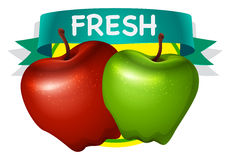 Fresh green and red apple. Illustration Royalty Free Stock Photo