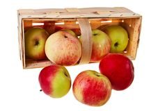 Fresh green, red apples in wooden basket. Stock Photography