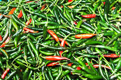 Fresh green and red chili at a market in Bangkok Stock Images