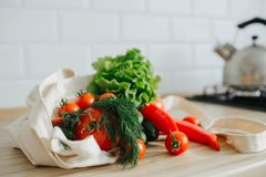 Fresh vegetables in linen bag stock photography