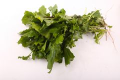 Fresh green pack rocca. Fresh green rocca for vegeterian and people who are on diet royalty free stock image